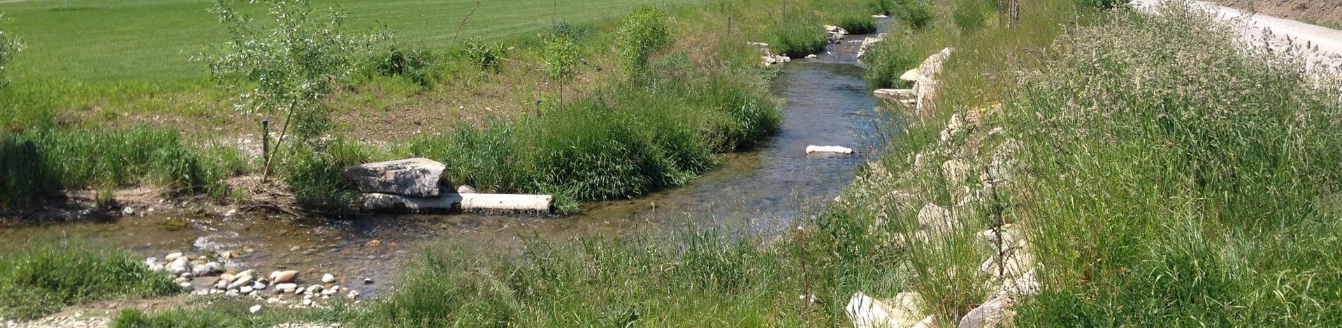 Aménagement de cours d'eau proche de l'état naturel