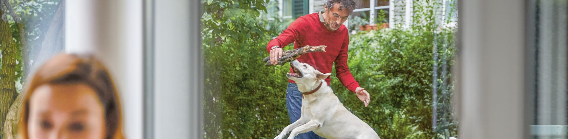 Assurance animaux - personne qui joue avec un chien