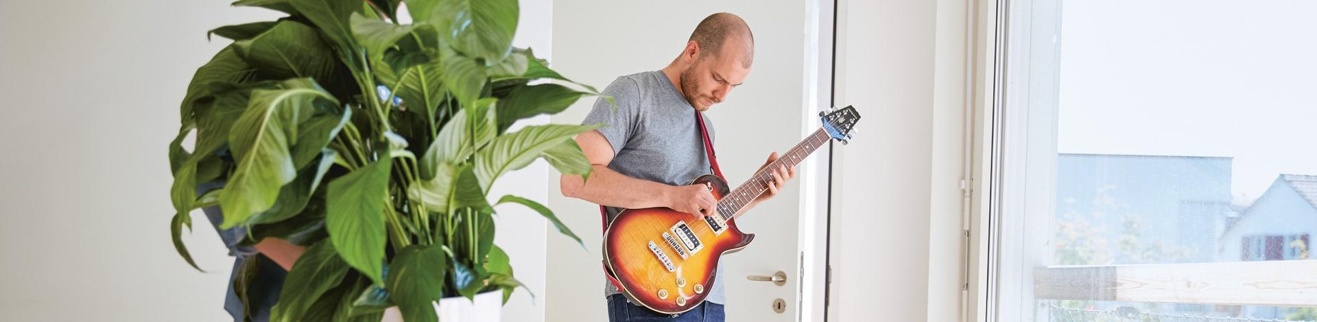 Assurance ménage guitariste et plante