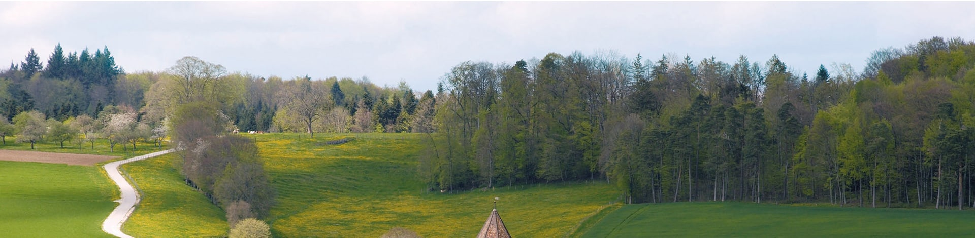 Wald und Wiese in der Region Jura