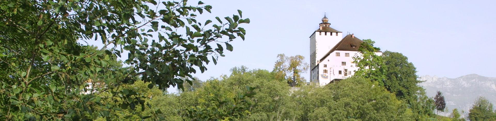 Campagne dans la région de Buchs
