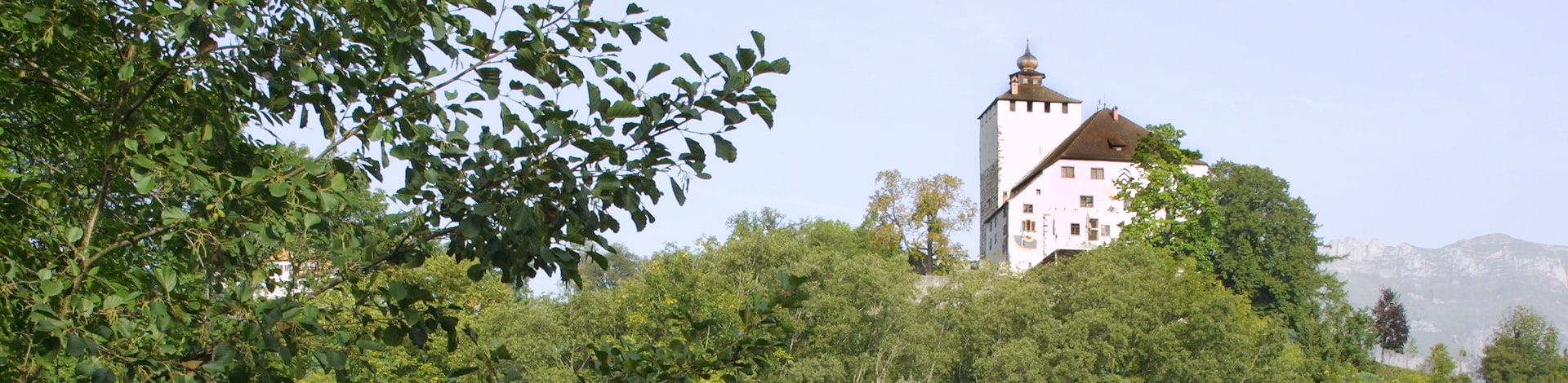 Schloss in Buchs-Sargans
