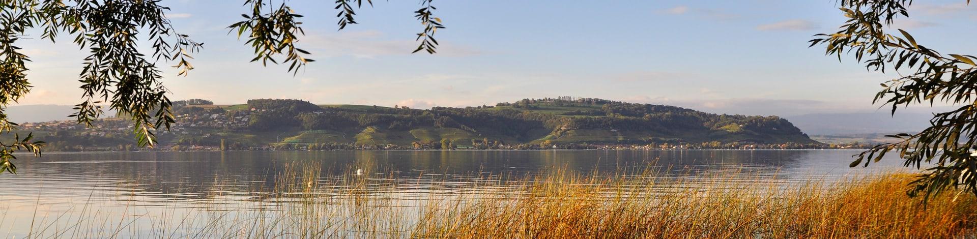 vue sur le lac de Morat