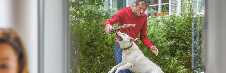 Assicurazione animali da compagnia