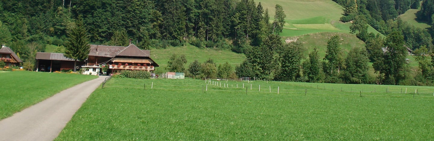 Wiese in der Region Emmental