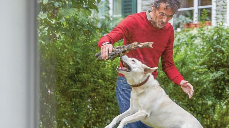 Haustierversicherung - Person mit Hund