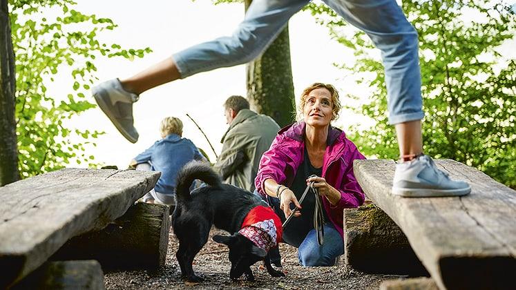 Adottare il comportamento corretto con le zecche può salvare la vita